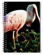 Rosette Spoonbill Shimmering Spiral Notebook