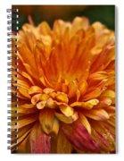 Rosey Glow Mum Spiral Notebook