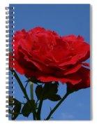 Rosie Skies Spiral Notebook