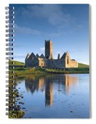 Rosserk Friary, Co Mayo, Ireland 15th Spiral Notebook