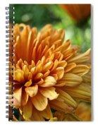 Rosy Glow Mum Spiral Notebook