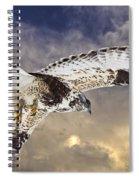 Rough Legged Hawk In Flight Spiral Notebook
