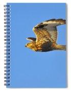 Rough-legged Hawk Spiral Notebook