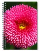Round Pink Flower Spiral Notebook