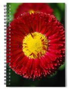 Round Red Flower Spiral Notebook