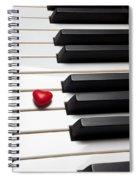Row Of Piano Keys Spiral Notebook