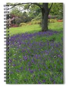 Rowallane Garden, Co Down, Ireland Wild Spiral Notebook