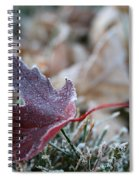 Ruby Frost Spiral Notebook