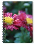Ruby Rain Spiral Notebook