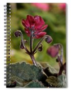 Ruby Ready For Action Spiral Notebook