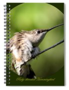 Ruby-throated Hummingbird  - The Stretch Spiral Notebook