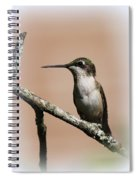 Ruby-throated Hummingbird - Totally Innocent Spiral Notebook