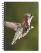 Ruby-throated Hummingbird - Twirling Spiral Notebook