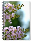 Ruffled Twins Spiral Notebook