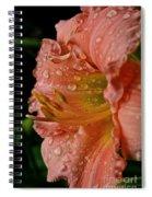 Ruffles And Rain Spiral Notebook