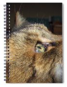 Runcius- The King Kitty Spiral Notebook