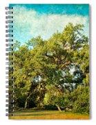Ruskin Oak Spiral Notebook