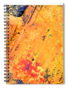 Rust 3 Spiral Notebook