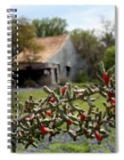 Rustic Cactus Abandoned Barn Spiral Notebook