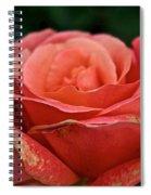 Rustic Rose Spiral Notebook