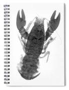 Rusty Crayfish Spiral Notebook