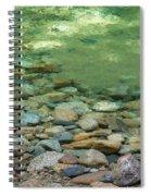 Sabbath Day Pool Spiral Notebook