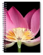 Sacred Lotus Nelumbo Nucifera Spiral Notebook