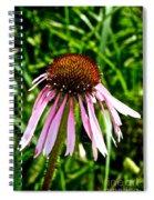 Sad Cone Flower Spiral Notebook