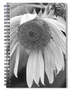 Sad Sunflower Black And White Spiral Notebook