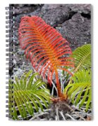 Sadleria Fern Hawaii Spiral Notebook