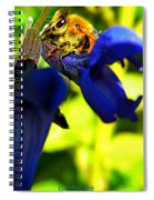 Sage And Bee Number Two Spiral Notebook