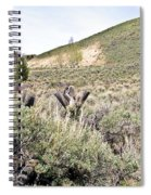 Sage And Pasture Spiral Notebook