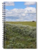 Sagebrush And Buffalo Spiral Notebook