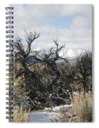 Sagebrush And Snow Spiral Notebook