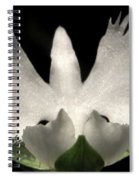 Sagi-so Or Crane Orchid Spiral Notebook