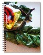 Salad Dressing Spiral Notebook