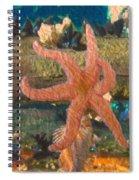 Sally Starfish Spiral Notebook
