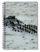 Salt Water Crocodile 3 Spiral Notebook
