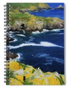 Saltee Islands, Co Wexford, Ireland Spiral Notebook