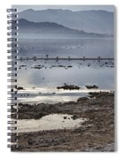 Salton Sea Birds Spiral Notebook