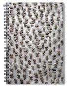 Salvia Polystachya Seeds Spiral Notebook