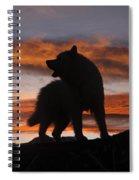 Samoyed At Sunset Spiral Notebook
