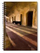 San Cristobal Shadows Spiral Notebook