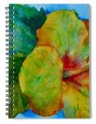San Diego Hibiscus Study I Underwater Spiral Notebook