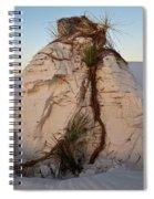 Sand Pedestal With Yucca Spiral Notebook