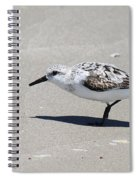 Sanderling On The Beach Spiral Notebook