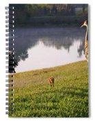 Sandhill Crane Family Fun Spiral Notebook
