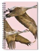 Sandhill Crane Family II Spiral Notebook
