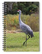 Sandhill In The Grass With Wildflowers Spiral Notebook