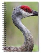 Sandhill Profile Spiral Notebook